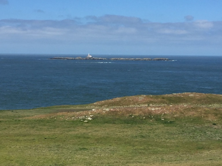 The Skerries from Camel Head