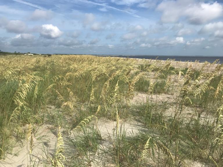 Ameila Island Beach